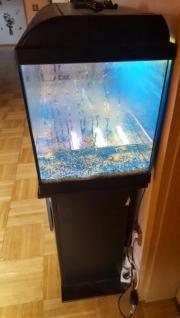 120 liter Aquarium