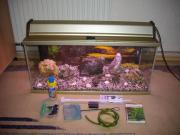 94 Liter Aquarium