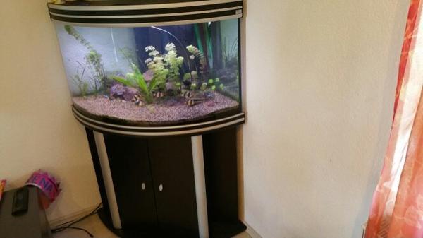 eckaquarium zubeh r neu und gebraucht kaufen bei. Black Bedroom Furniture Sets. Home Design Ideas