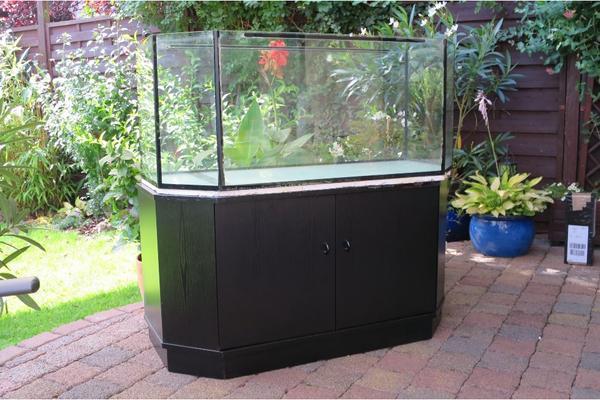 Aquarium glasbecken neu und gebraucht kaufen bei for Aquarium gebraucht