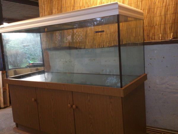 aquarium glas kleinanzeigen tiermarkt deine. Black Bedroom Furniture Sets. Home Design Ideas