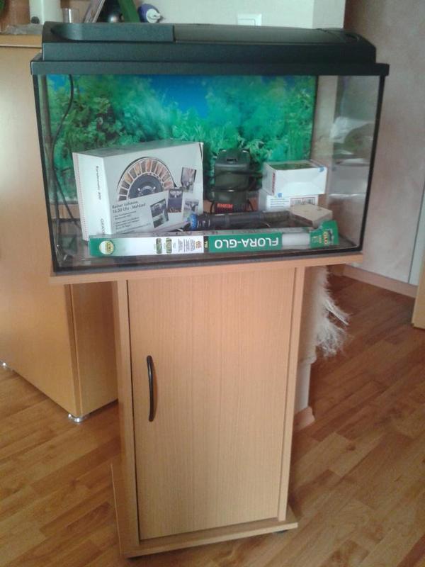 ich biete ein 60 liter aquarium ma e b 60 t 30 h 42. Black Bedroom Furniture Sets. Home Design Ideas