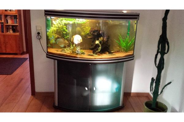 aquarium aquatlantis zu verkaufen in heidelberg fische. Black Bedroom Furniture Sets. Home Design Ideas