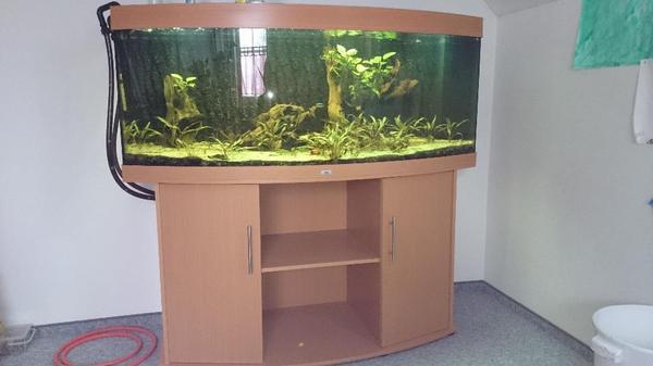 aquarium fische zubeh r in eching niederbayern kaufen bei deine. Black Bedroom Furniture Sets. Home Design Ideas