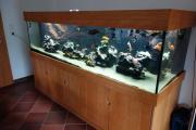 Aquarium komplett vollautomatisiert
