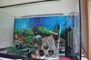 Aquarium Komplettsystem 80x45x35 (