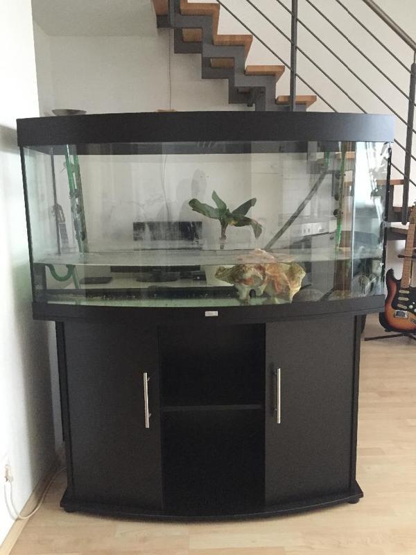 Juwel vision neu und gebraucht kaufen bei for Aquarium gebraucht