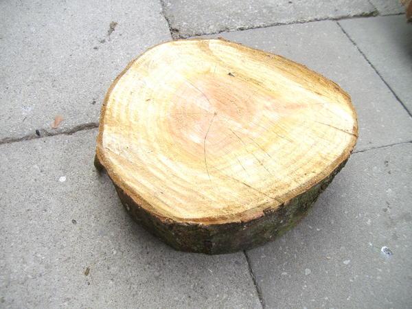 Baumscheiben zur dekoration und basteln aus versch holzarten in kleinsendelbach alles - Baumscheiben basteln ...