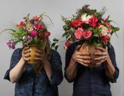Blumen Goldbeck sucht