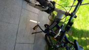 Bocas Fahrrad 26