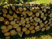 Brennholz - Esche / Fichte -