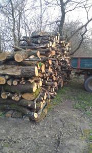 brennholz in ihre naehe handwerk hausbau kleinanzeigen kaufen und verkaufen. Black Bedroom Furniture Sets. Home Design Ideas