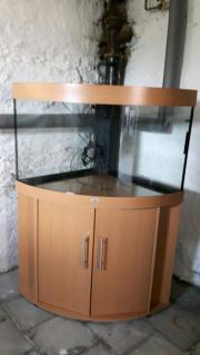 Eckaquarium 190 Liter