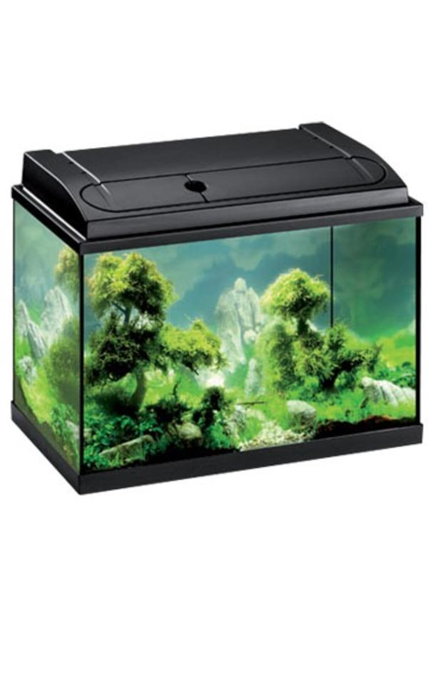 eheim aquarium 84l b h t 35 40 60 cm inkl zubeh r in vaterstetten fische aquaristik kaufen. Black Bedroom Furniture Sets. Home Design Ideas