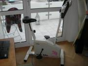 Ergo Bike (Daum