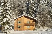 Ferienwohnung Bregenzerwald - Winterurlaub