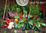 Garten - Anbaufläche - Saisongarten -