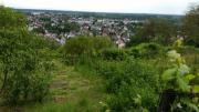 Garten hemsbach