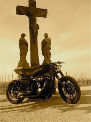 Harley Davidson Costum-
