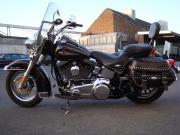 Harley Davidson FLSTC