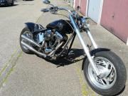 Harley Davidson * Softtail *
