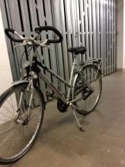 Hercules Damen-Fahrrad