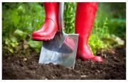 Hilfe ---- Garten gesucht !
