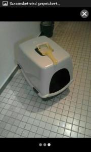 Katzen Toilette