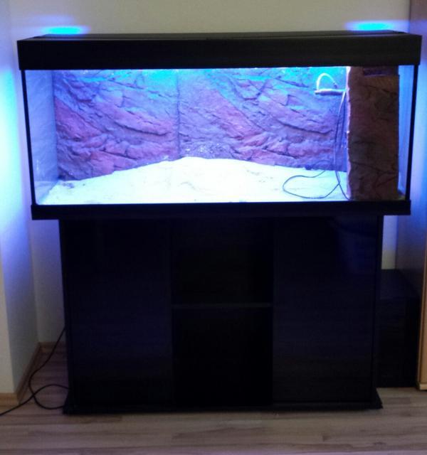 aquarium fische zubeh r in kirchheim unter teck. Black Bedroom Furniture Sets. Home Design Ideas
