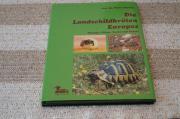 Landschildkrötenbuch Haltung