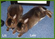 Lili und Lolo,