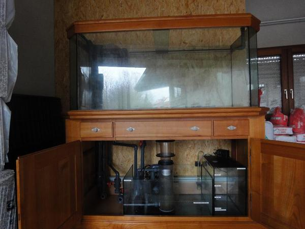 meerwasseraquarium in aglasterhausen fische aquaristik. Black Bedroom Furniture Sets. Home Design Ideas