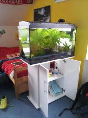 Neuwertiges Eheim-Aquarium