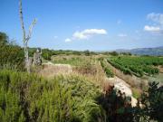 Nord Sardinien: Grundstück,