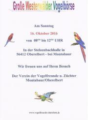 Offene Vogelbörse Oberelbert