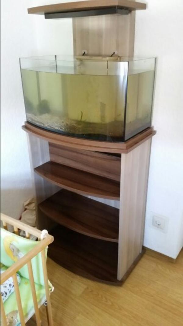 offenes aquarium neu und gebraucht kaufen bei. Black Bedroom Furniture Sets. Home Design Ideas