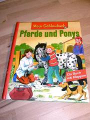 Pferde & Ponys/ KLAPP-