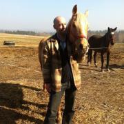 Pferdehof in der