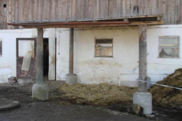 Pferdeunterstand zu verschenken in eurasburg biete for Fenster zu verschenken