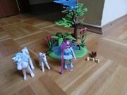 Playmobil Fee Kutsche