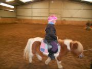 Pony reiten für