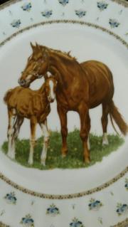 Sammelteller Pferde