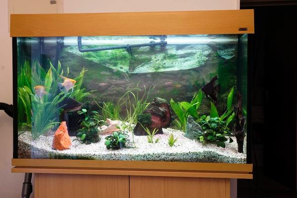 aquarium unterschrank neu und gebraucht kaufen bei. Black Bedroom Furniture Sets. Home Design Ideas