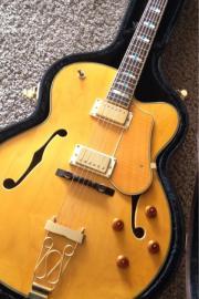 schöne Fenix Jazzgitarre