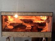 Terrarium mit Felsrückwand Echsen, Terrarium. Biete hier selbstgebautes Terrarium mit Felsrückwand zum Verkauf an es ist ... VHS D-55566Bad Sobernheim Heute, 16:02 Uhr, Bad Sobernheim - Terrarium mit Felsrückwand Echsen, Terrarium. Biete hier selbstgebautes Terrarium mit Felsrückwand zum Verkauf an es ist