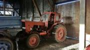 Traktor Belarus MTS