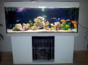 verkaufen 450l Aquarium