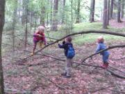 Waldkindergarten Lindberg: Wir