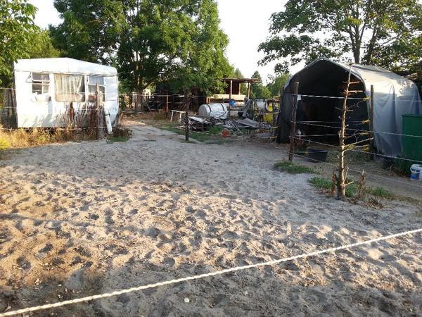 weidezelt carport in uelversheim pferdeboxen stellpl tze kaufen und verkaufen ber private. Black Bedroom Furniture Sets. Home Design Ideas