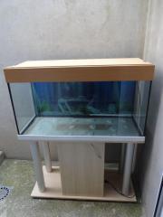 200 L Aquarium